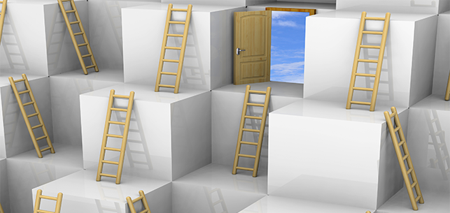 A small company could be the ladder to a larger firm